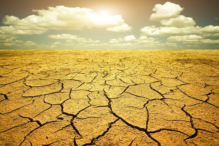 Засуха в Калифорнии (3)